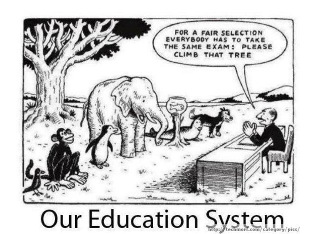 Fair Assessment