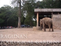 Ragunan Zoological Gardens