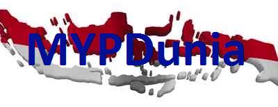 IB MYP Dunia Network logo