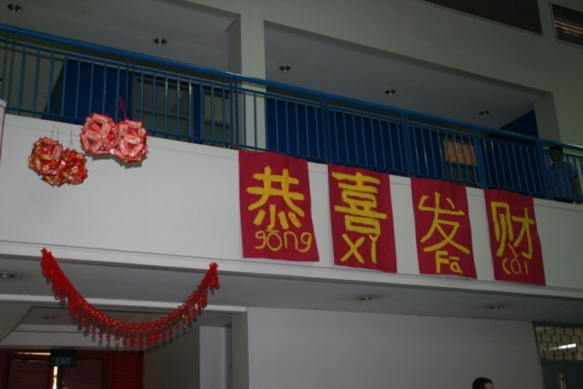 Chinese New Year Lunar New Year (3)